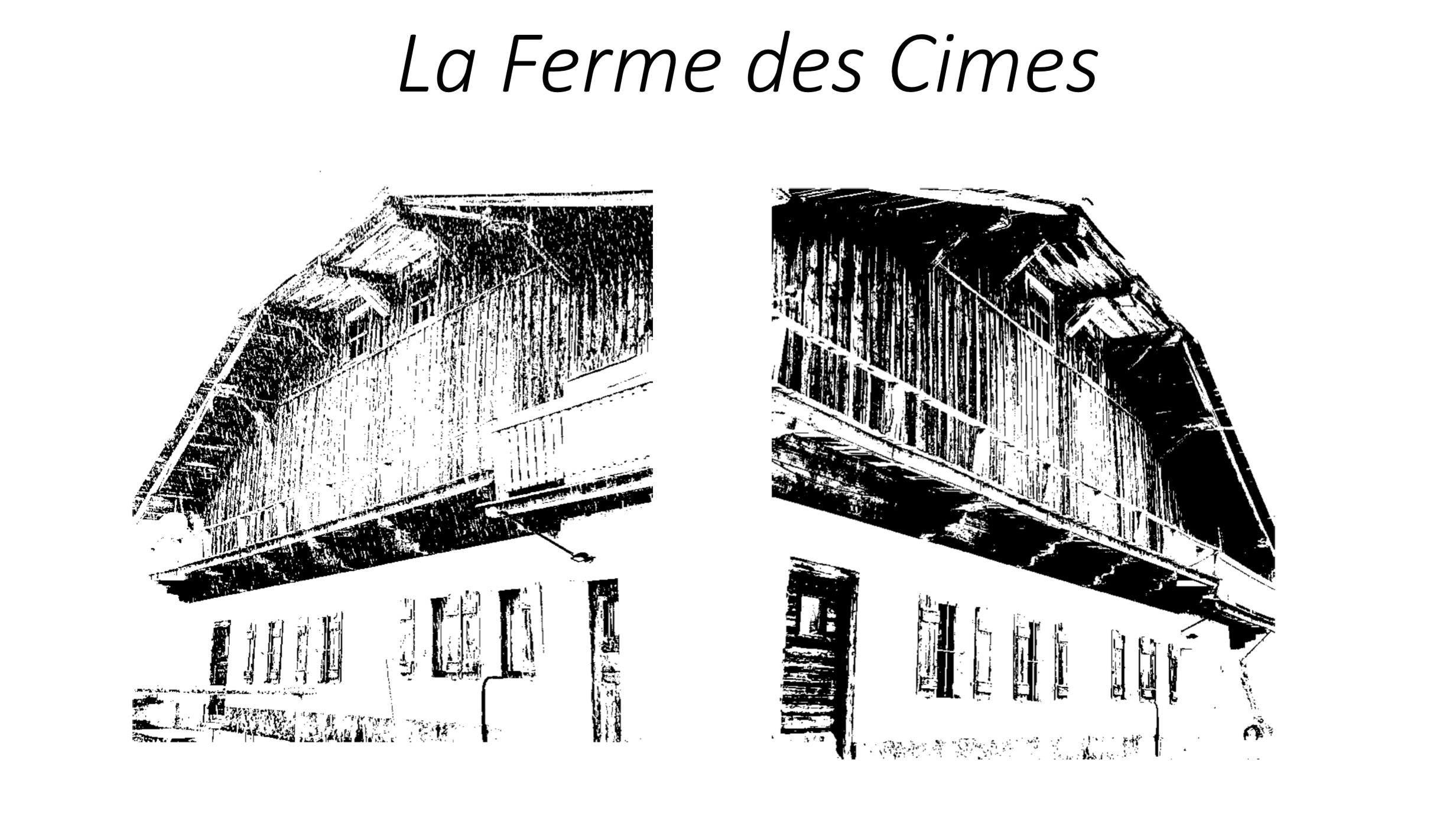 Megeve Farmhouse to Renovate
